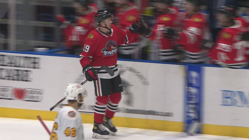 Dylan McLaughlin celebrates with his team after scoring a shorthanded goal in the Rockford...