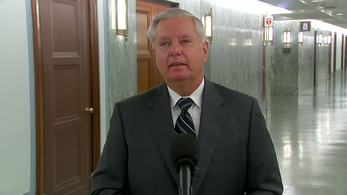 Senate Judiciary Chairman Sen. Lindsey Graham, R-S.C., reflects on the blowback Sen. Dianne...