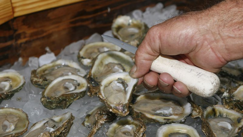 FILE - In this Aug. 13, 2013 file photo, oysters are displayed in Apalachicola, Fla. The...