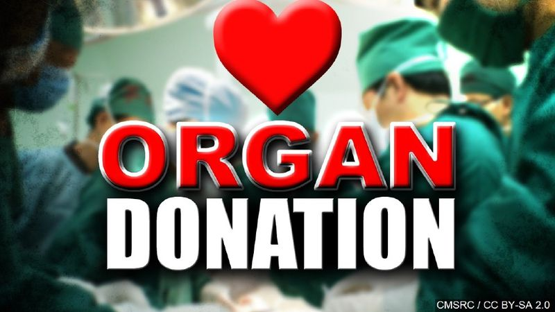 Illinois organ and tissue donor registry hits 7 million registrants