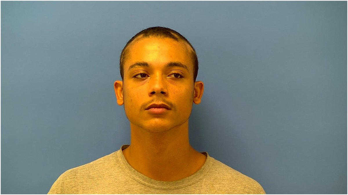 Draven Webb is charged with two counts of reckless homicide in connection with a Lee County...