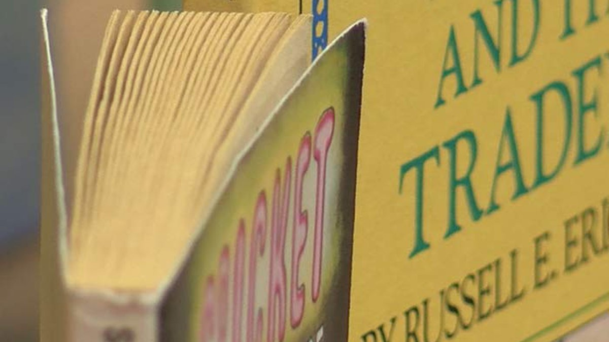 Pick up a good book and help a good cause by attending the annual VOICES of Stephenson County...